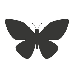Beautiful butterfly silhoeutte icon vector