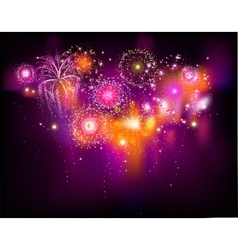 Beautiful firework vector image vector image