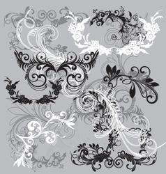 Floral scrip filigrees vector