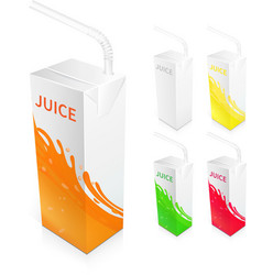 Juice Box Package vector image vector image