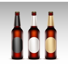 Set of glass brown bottles red beer with labels vector