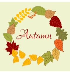 Frame with autumn leaves and rowan fruits vector