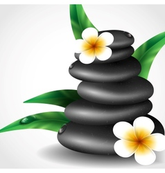 Spa stones with frangipani flower vector