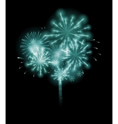 Fireworks salute on a dark vector