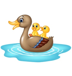 Cartoon ducks on the pond isolated vector