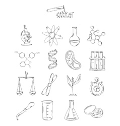 Professional collection of icons and elements The vector image