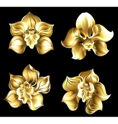 Set of gold orchids vector