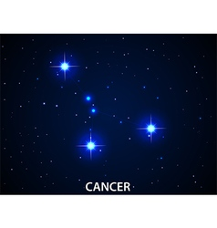Set of Symbol Zodiac Cancer vector image vector image