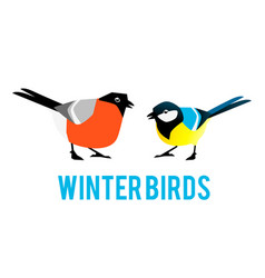 Winter birds are tit and bullfinch vector