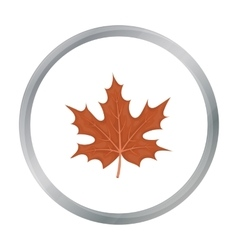 Maple leaf icon in cartoon style isolated on white vector image