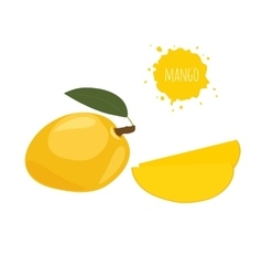 Yellow mango isolated on white background vector