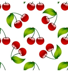 Seamless pattern background cherry red ripe berrie vector