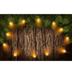 Christmas light with fir branches vector image