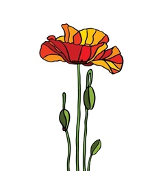 Poppy stained glass vector image vector image