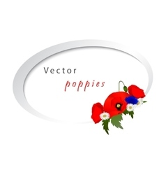 white background with chamomile vector image