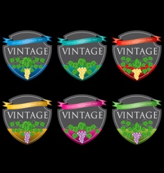 wine labels31 vector image