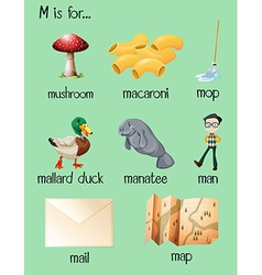 Different words begin with letter m vector