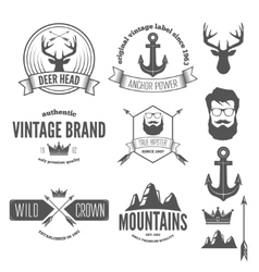 Set of stylish vintage hipster badge modern vector image