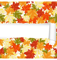 Autumn seamless vector