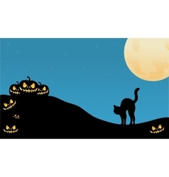 Pumpkin and cat halloween silhouette vector image