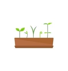 Image of flower pot vector