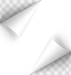 Paper curl vector image