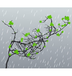 rain2 vector image