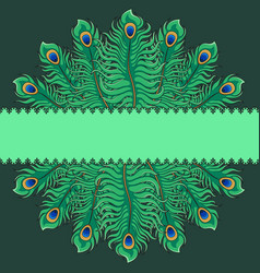 Greeting card with peacock feathers vector