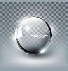 Modern shiny transparent glass sphere and glitter vector