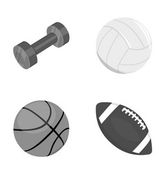 Blue dumbbell white soccer ball basketball vector