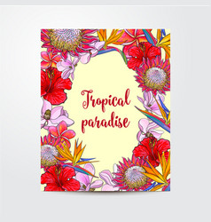 Postcard greeting card banner design with exotic vector