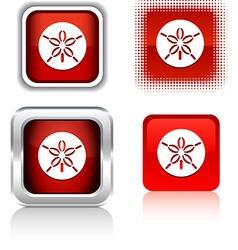 Sand dollar icons vector
