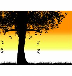 tree silhouette old grass summer vector image vector image