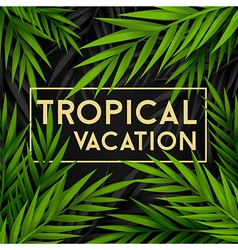 Tropical vacation card with jungle leaves vector image
