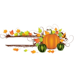 pumpkin art vector image
