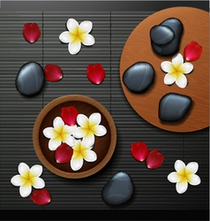 Spa background with tropical flowers vector