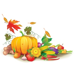 Still life of autumn harvest vector