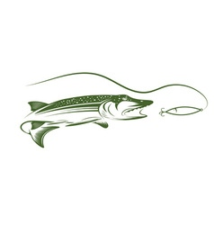 Pike and lure design template vector