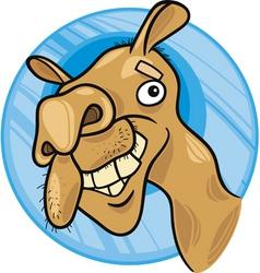 dromedary camel vector image
