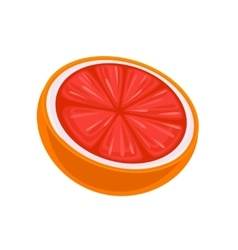 Juicy Grapefruit isolated on white vector image vector image