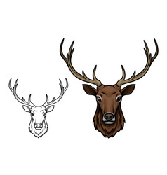 deer antlers muzzle isolated sketch icon vector image vector image