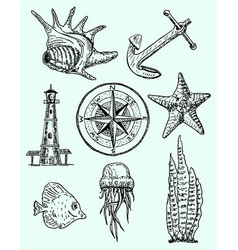ink hand drawn style marine set vector image vector image