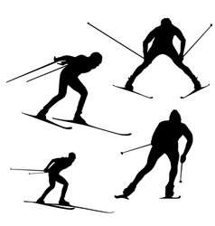 silhouette of a skier on a white background vector image