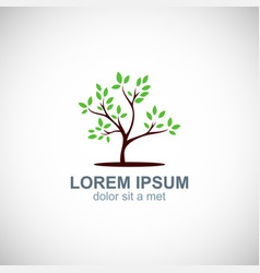 tree nature environment logo vector image