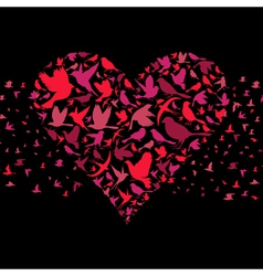 Heart a bird vector image