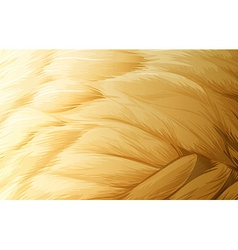 A feather texture vector