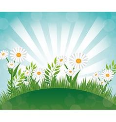 Flowers design vector image