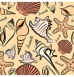 Seashells seamless vector