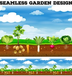 Different kind of vegetables in the garden vector