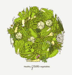 Green vegetables ball vector